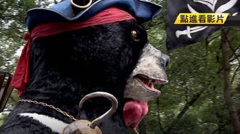 熊抱嘉年華盛大登場 海盜虎克熊成搶拍焦點