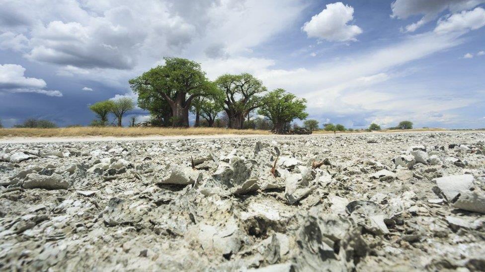 人類起源:現代文明「可能出自博茨瓦納」