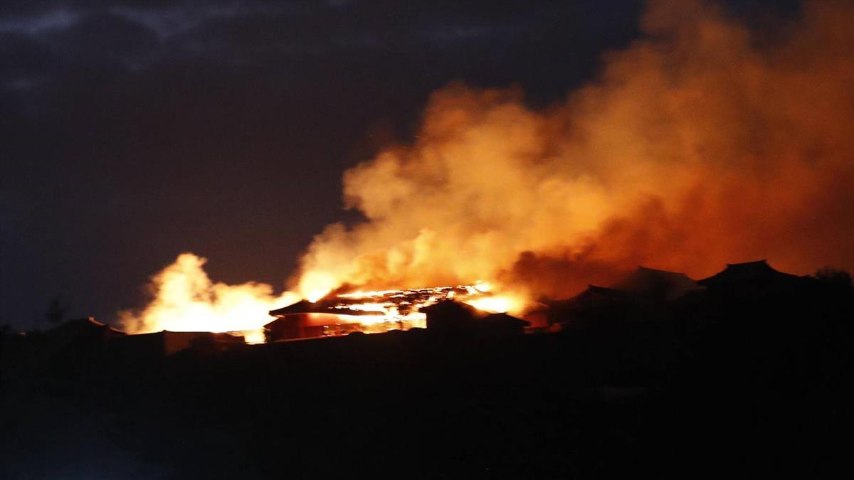 沖繩首里城遭燒毀 專家:重建木材來自台灣