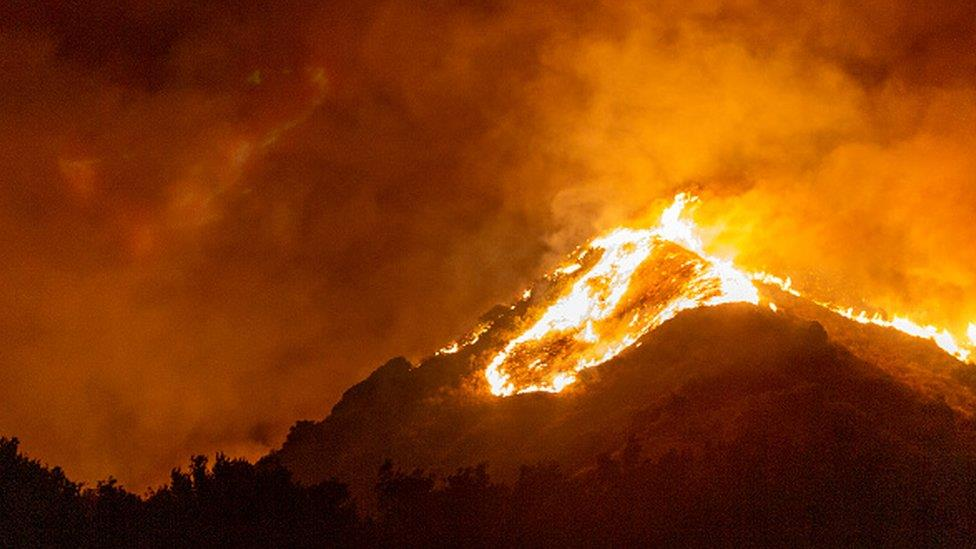 氣候變化:科學家警告全球面臨氣候危機