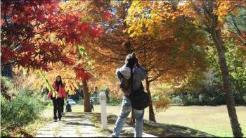 全國秋冬遊「每人住宿補助1千元」名額僅有4萬人!