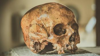 東奧主場館挖出187副骸骨 窺見江戶時代家暴