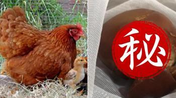 母雞4年不下蛋被殺!剖開驚見雞寶 網:發財了