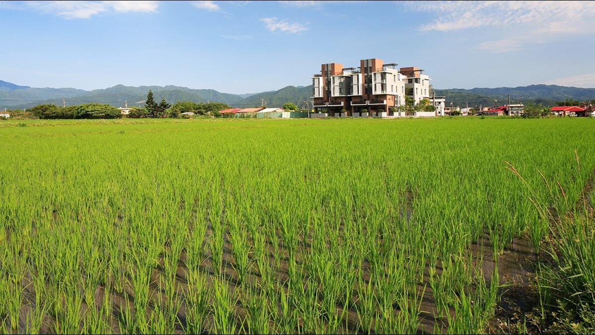 雲林農產值全國第一 農民收入卻倒數? 網揭「不能說的秘密」