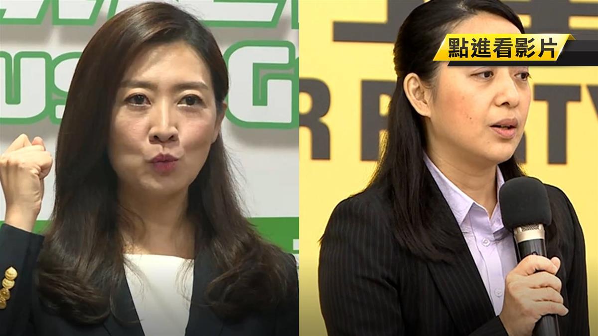 小黨不分區有亮點 綠黨推鄧惠文 時力推燈泡媽