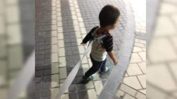 小孩綁牽繩被路人狂罵 網力挺媽:安全第一