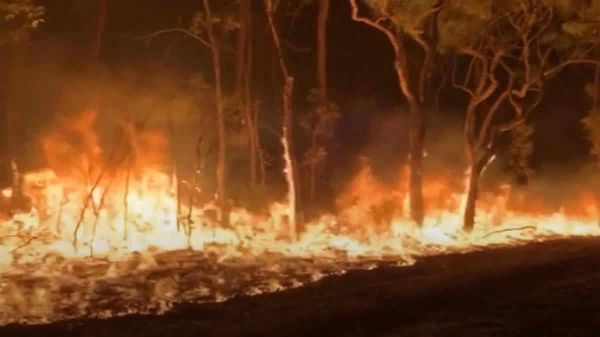 澳野火燒不停 專家揭:呼應牛津年度代表字