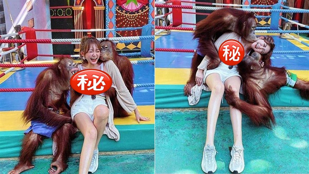 豪乳正妹遭猩猩強吻狂猥褻!被拍下凌辱現場