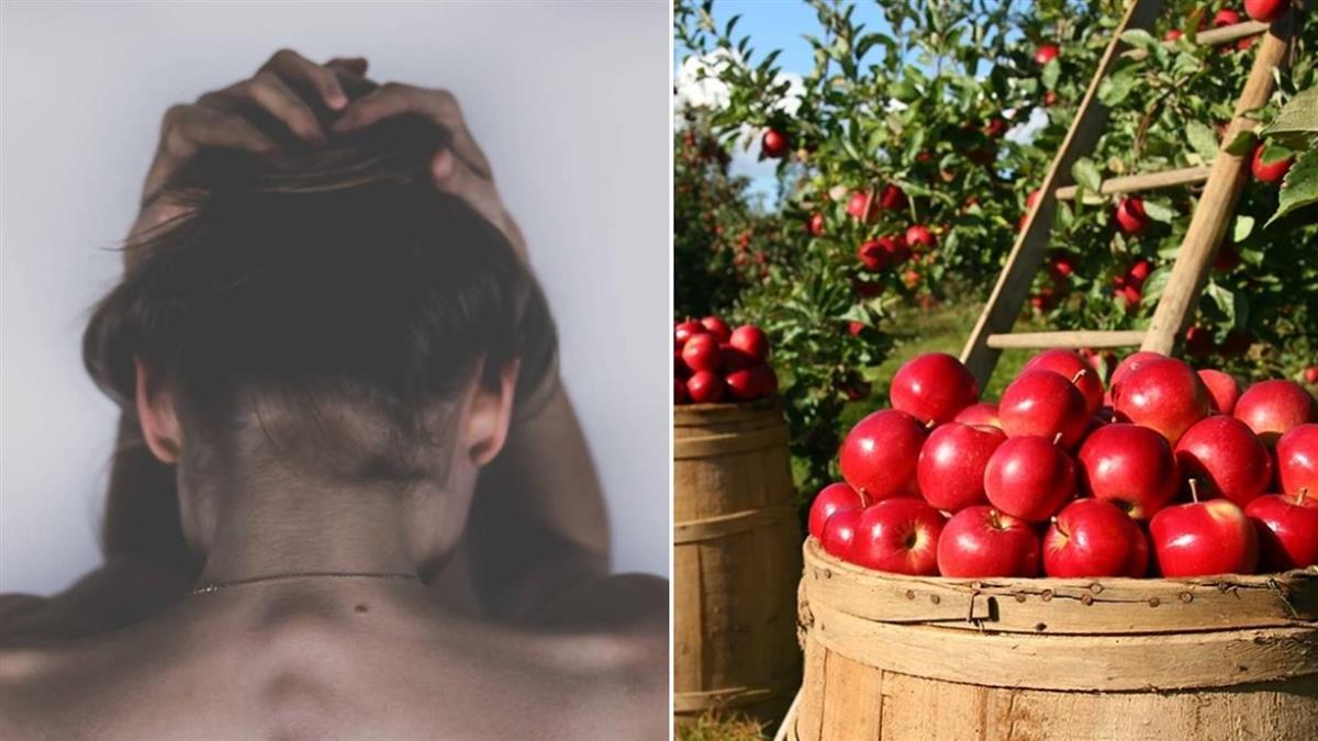 8台女赴澳摘水果 被逼賣肉半年還房租