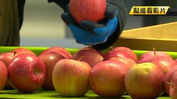 就愛這味!台奪青森蘋果出口第一