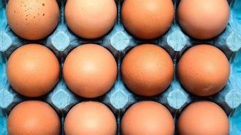 雞蛋:預防流感的幕後英雄