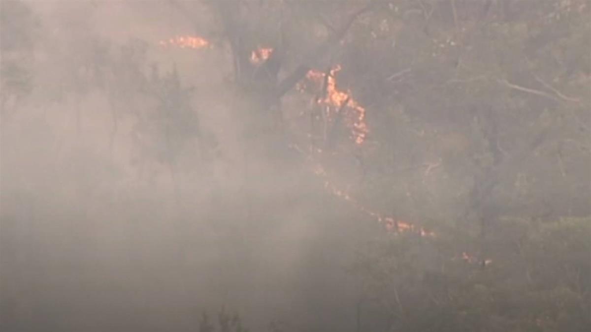 破紀錄!澳洲遭野火肆虐 狂飆40.9度高溫
