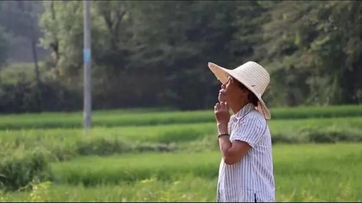 8旬嬤耗盡2.5億建「夢想瓷宮」 拒絕富商收購寧住茅棚