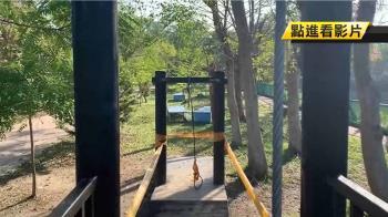 公園2米高溜索突斷!2歲女童慘摔母氣炸