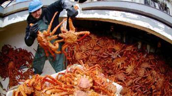 年做5天賺300萬! 阿拉斯加捕蟹船缺人原因曝