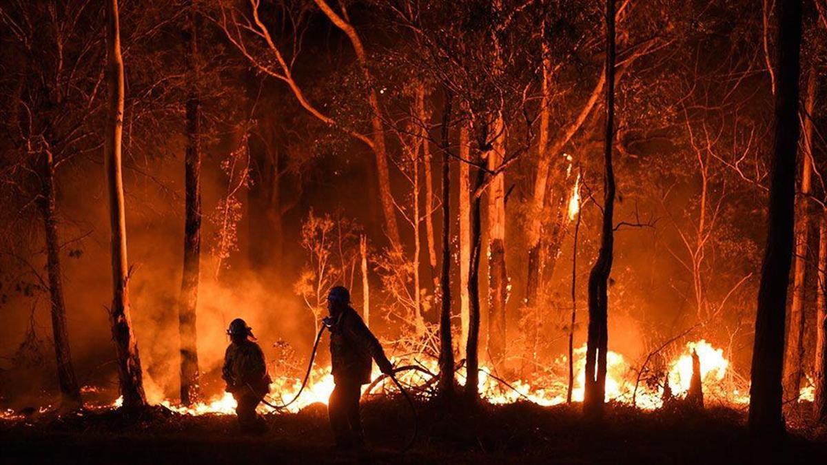 氣候變暖,全球火災成新常態?火險逃生必備知識貼士