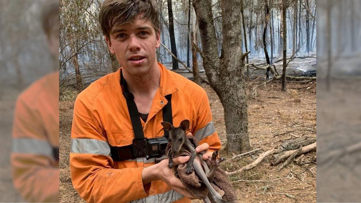 鮮肉網紅返澳救野火 抱起小袋鼠暖喊:別怕
