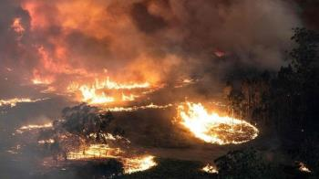 澳洲山林大火連燒四個月「以火防火」是否可行