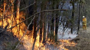 澳洲野火煙霧影響全球 NASA:將繞地球一圈
