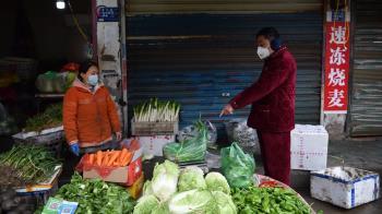 武漢肺炎:經濟損失跡象顯露 點算為時過早