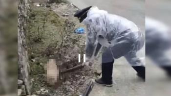 殘忍!傳確診兩例武肺病例 全村竟齊屠殺寵物狗