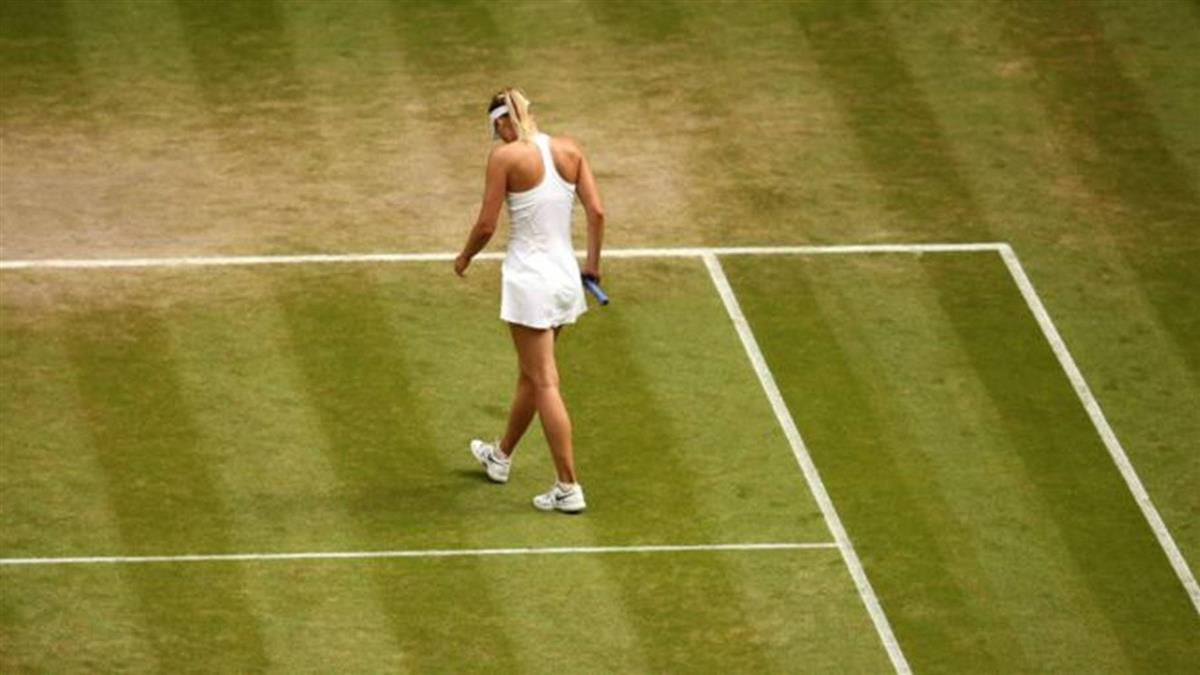 莎拉波娃禁賽:低谷的背後