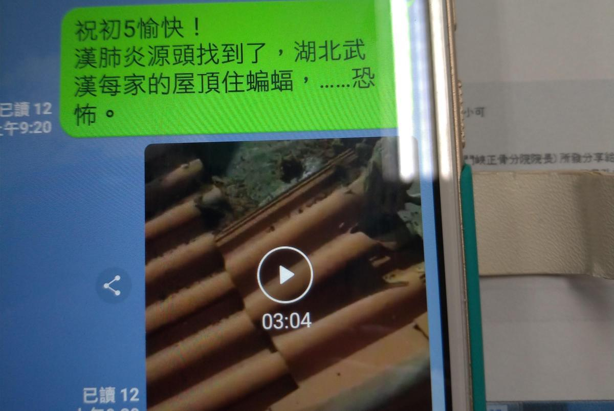 散布「武漢每家住帶病毒蝙蝠」影片 6旬婦慘了