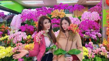 劉真病逝 20年閨蜜許願:下輩子再做好姐妹