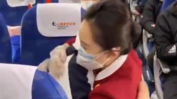 護理師3採陰性突逝 最後畫面擁抱空姐:要回家了