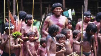 武肺燒進亞馬遜叢林 80萬原住民受威脅