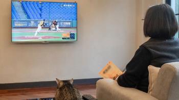 蔡總統守在電視前挺職棒 相約疫情過後球場見