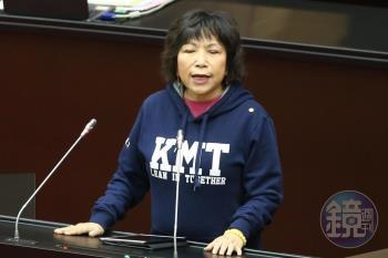 為氣炸鍋負責!葉毓蘭傳訊國民黨:再犯錯就辭職