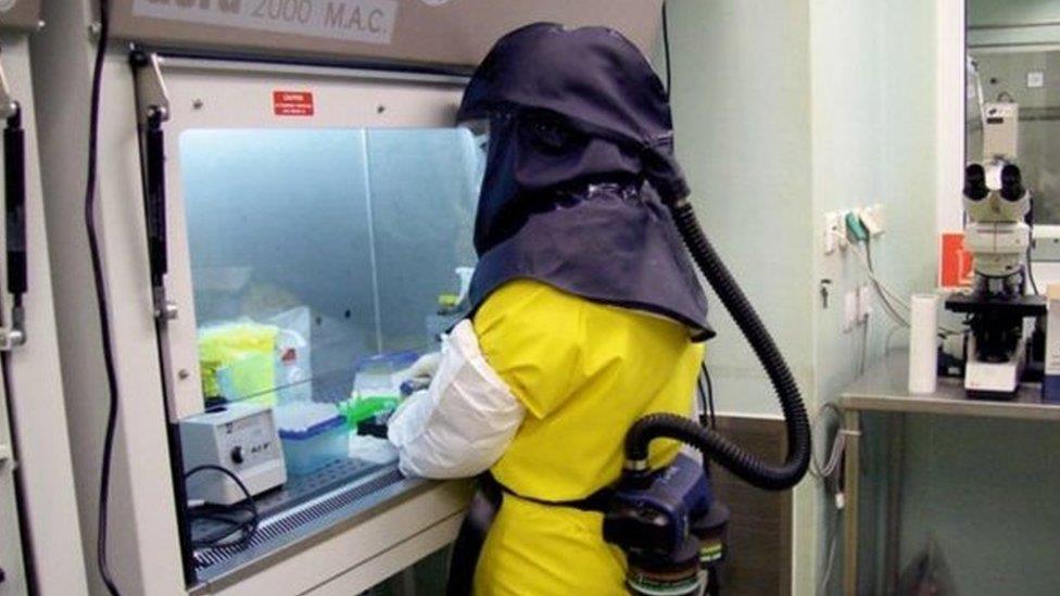 肺炎疫情: 新冠病毒實驗室洩露說法有無科學根據?