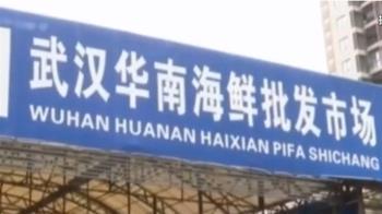 全球武肺破26萬死!世衛:武漢華南市場與疫情有關