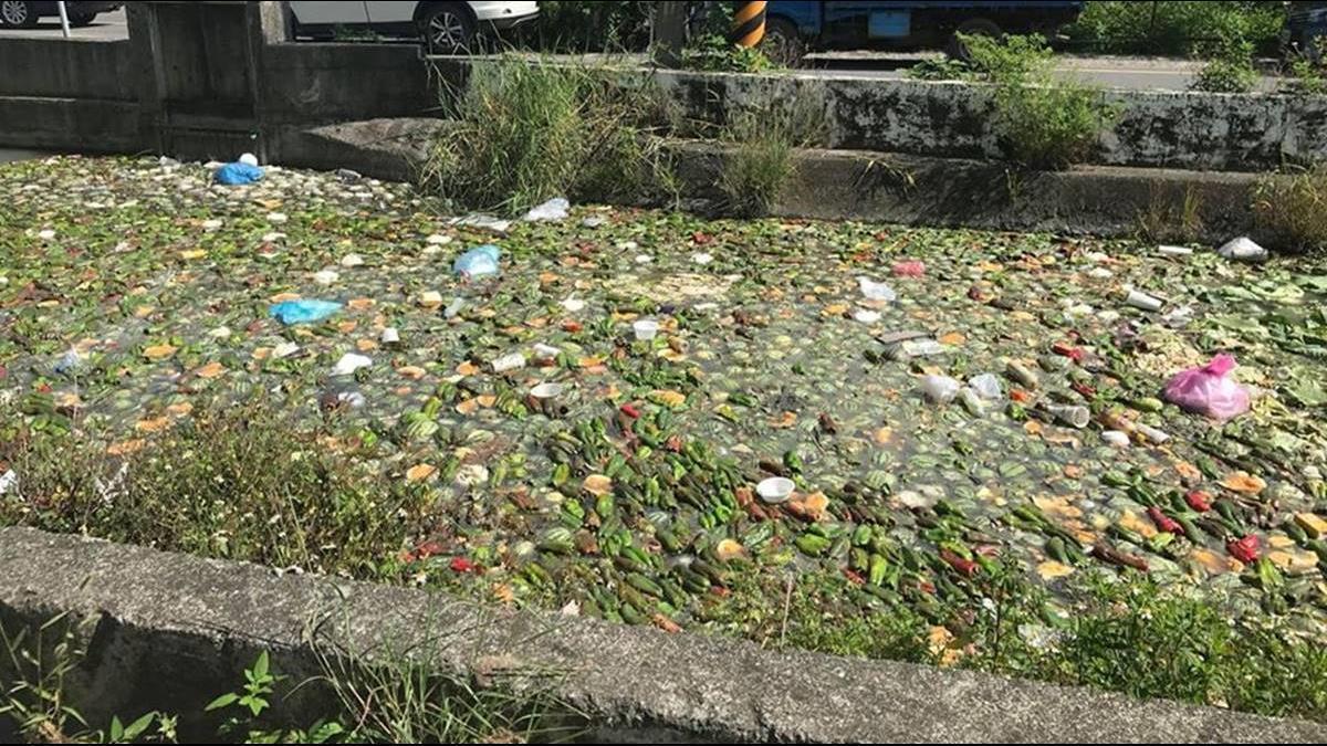雲林驚見「蔬果漂漂河」!40餘條河川散惡臭