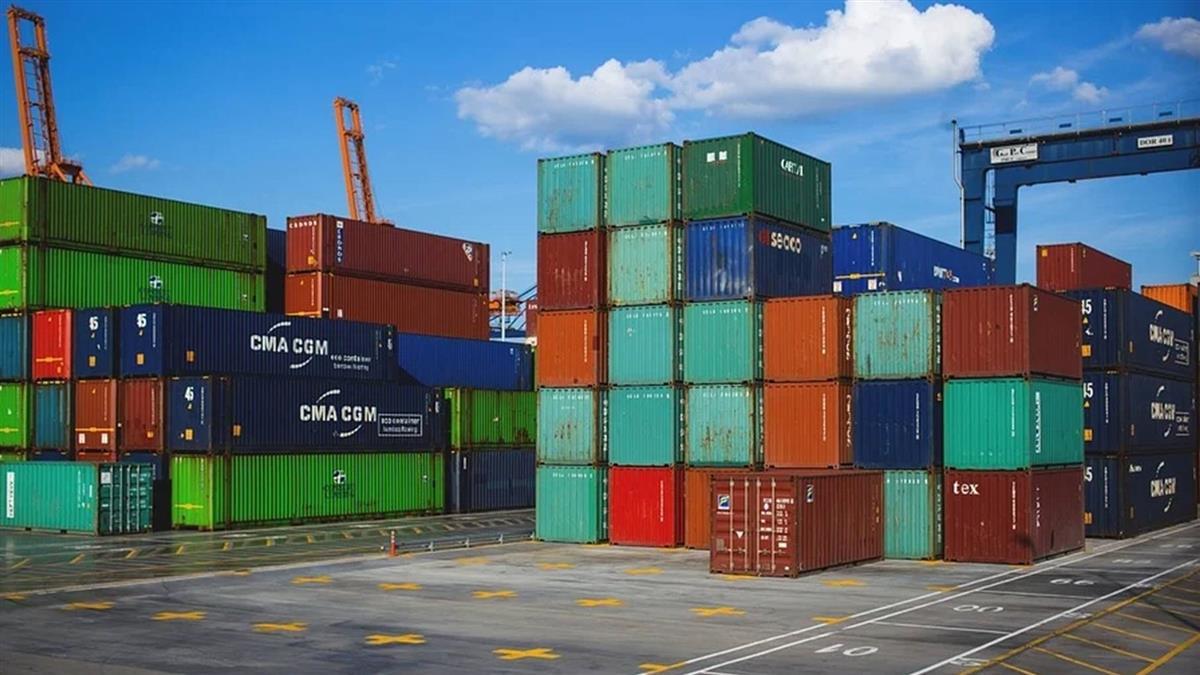 強毒紅火蟻后首度現蹤橫濱港 來自中國貨櫃