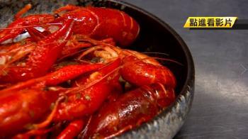 「小龍蝦」在台灣紅不起來?饕客曝關鍵原因