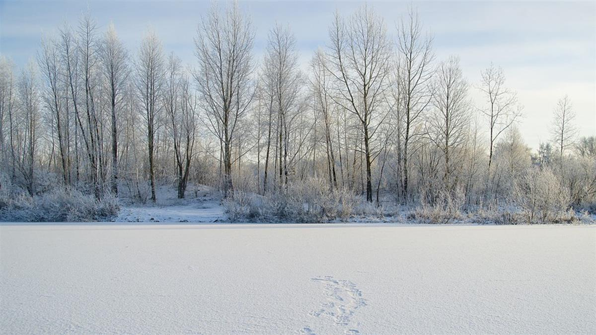 西伯利亞高溫破紀錄 北極圈小鎮飆38度