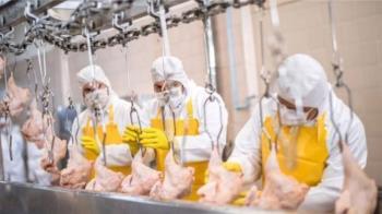 肺炎疫情:肉品加工廠為什麼成為重災區
