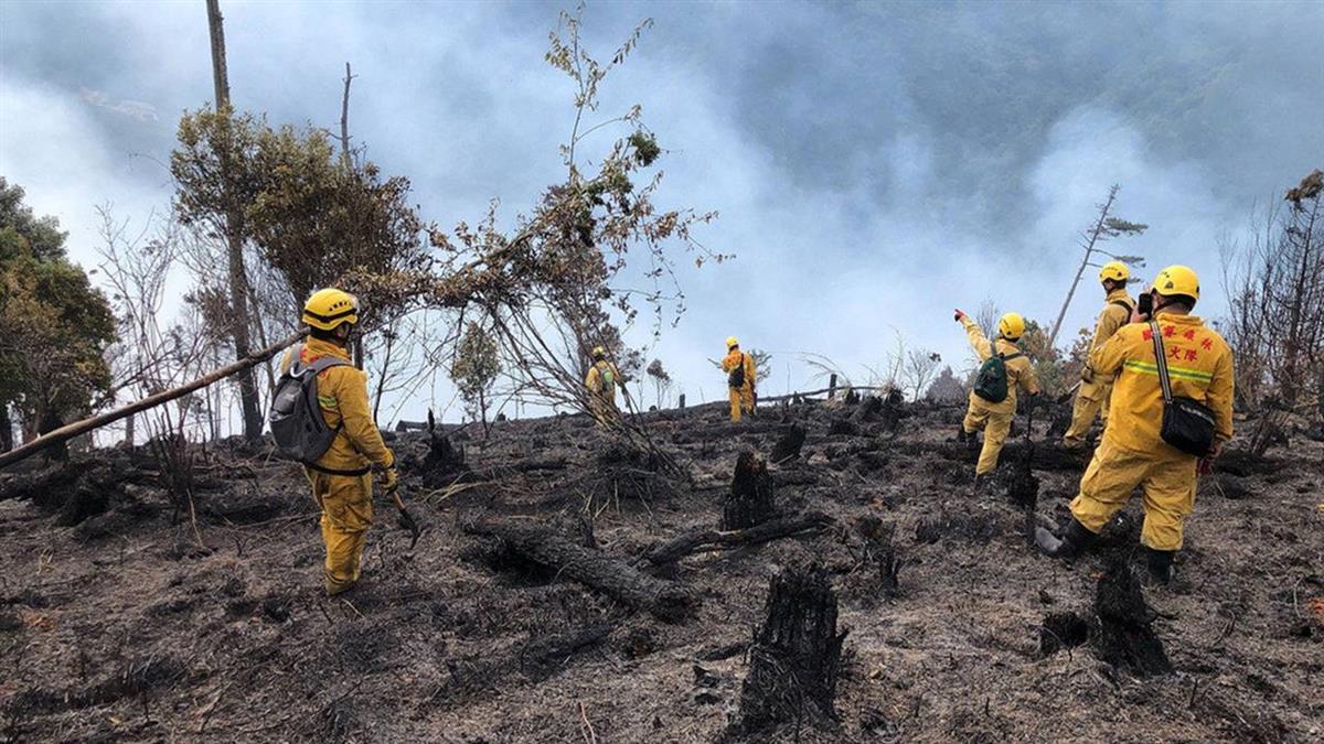 台中和平山區森林大火 延燒面積達3.7公頃