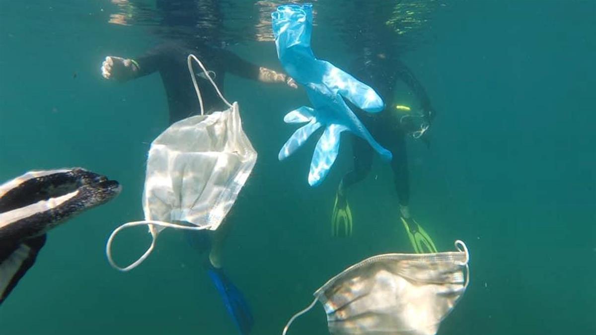防疫釀生態浩劫 海底打撈驚見口罩、手套