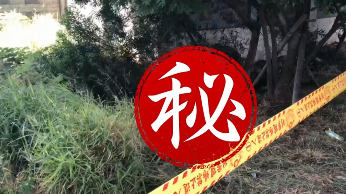 五楊高架下草叢中 發現1具發黑遺體