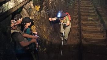4遊客拍照闖平溪線隧道 火車駕駛見亮光緊急煞車