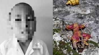 悚!6歲男童拆神像疑遭天譴 下半身全被狗啃爛慘死