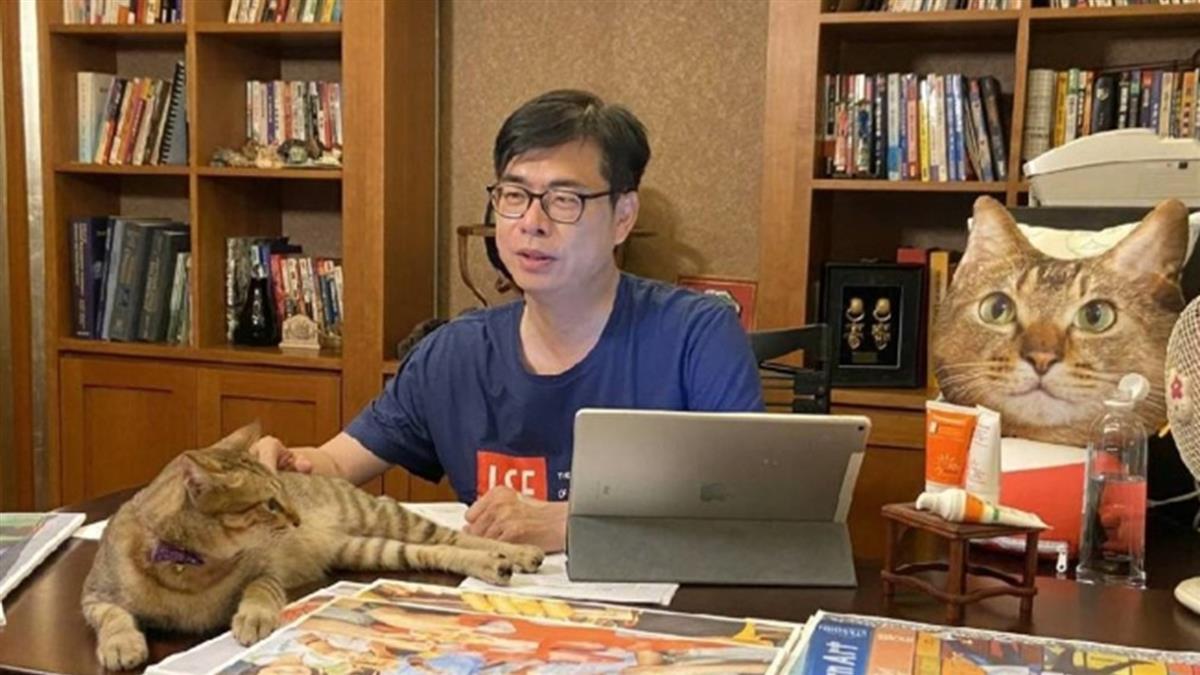 高市長補選尬直播 陳其邁找愛貓、李眉蓁拉黨大老