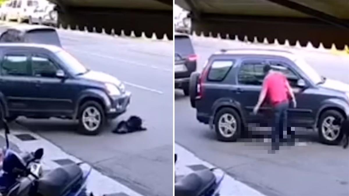 冷血!黑犬遭車2度輾壓 倒臥血泊掙扎...他竟下車多補一腳