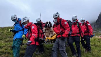 聖伯納犬走不動!受困英格蘭最高峰 16名救難人員抬下山