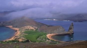 中國漁船徘徊加拉帕戈斯群島,外界憂破壞當地生態