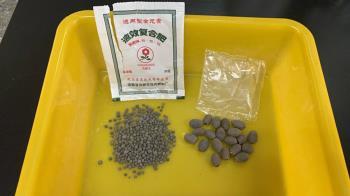 來自中國種子等貨品  防檢局:近一週獲通報9件