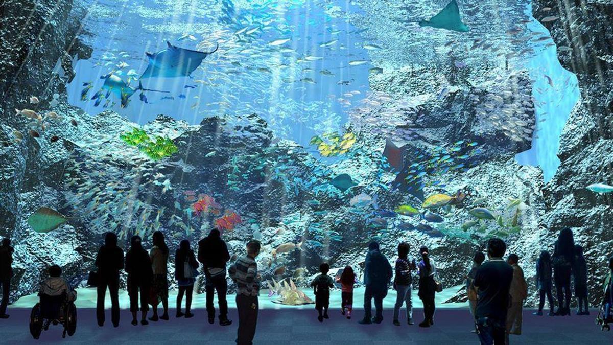 北台灣最大水族館「桃園Xpark」將開幕!13種特色展區 企鵝陪喝下午茶